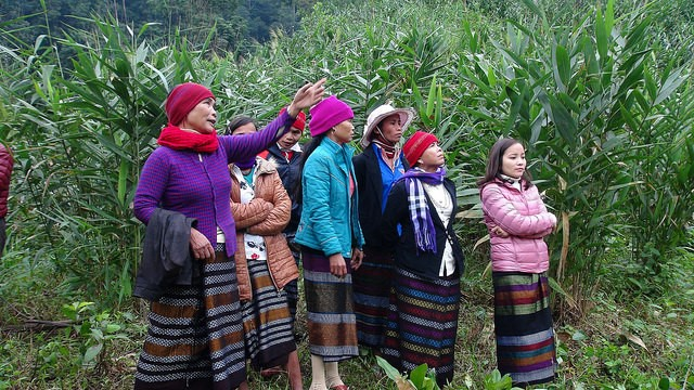 A sustainable income source and humanistic spirit of Van Kieu ethnic women in Khe Cat village