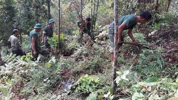 Converting Eucalyptus to indigenous forestry trees in the village community forest - The right direction of Ho Muoi village, Minh Son commune, Huu Lung district, Lang Son province
